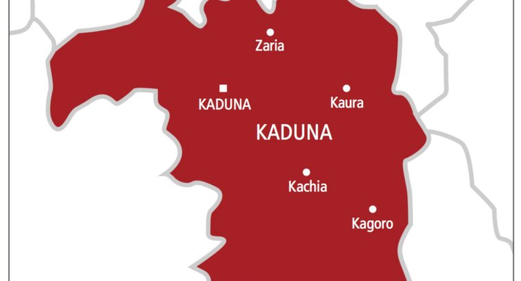 Reactions trail postponment of Kaduna Local Government elections