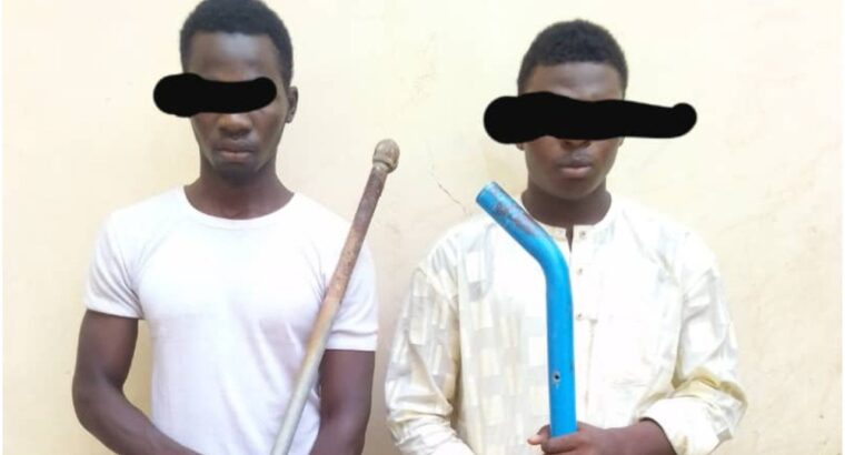 Police nab 4 suspects for armed robbery, culpable homicide in Yobe