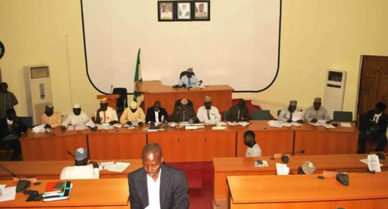 Insecurity: Niger Assembly urges State govt to expand scope of Ministry for LG